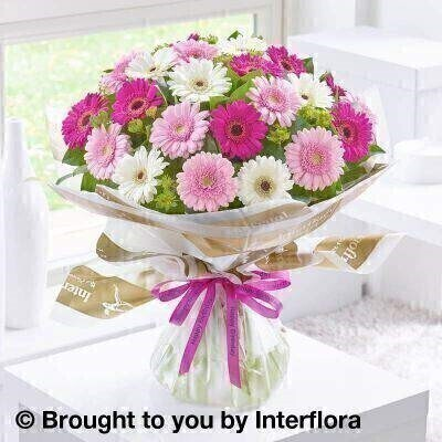 Pink and white Flowers  Bouquet in a Box <br><br>Liverpool Flower Delivery<br><br>We offer advanced booking flower delivery same day flower delivery 3 hour Flower delivery guaranteed AM PM or Evening Flower Delivery and we are now offering Sunday Flower Delivery. .<br><br>Hand arranged by our florists To give the best occasionally we may make substitutes Our flowers backed by our 7 days freshness guarantee Approximate dimensions 45x45cm This product is available for delivery throughout the UK<br><br>THIS PRODUCT COMES HAND ARRANANGED AND GIFT WRAPPED IN A WATER BUBBLE PRESENTED IN A BOX This bouquet of cheery germini in shades of pink and white is wonderfully informal yet fun too. The germini is a fashionable choice so this beautiful hand-tied selection is sure to prompt a radiant smile when it arrives on their special day.<br><br>Featuring pink germini white germini and cerise germini with green bupleurum and salal wrapped and trimmed with a Happy Birthday ribbon.<br><br>The best florist in Liverpool<b><b>Come to Booker Flowers and Gifts Liverpool for your Beautiful Flowers and Plants if you really want to spoil we also have a great range of Wines Champagne Balloons Vases and Chocolates that can be delivered with your flowers. To see the full range see our extras section. You can trust Booker Flowers and Gifts can deliver the very best for you